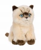 Zittende siamese katten poezen knuffel 15 cm