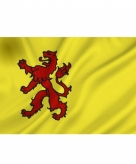 Zuid hollandse vlag