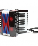 Zwarte accordeon