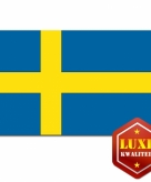 Zweedse vlag goede kwaliteit